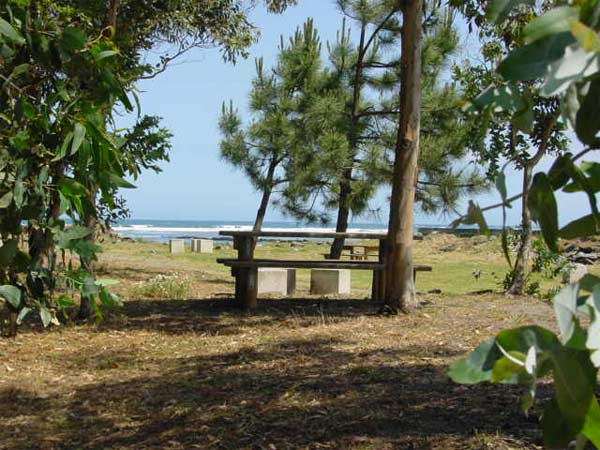 Foxos beach picnic area